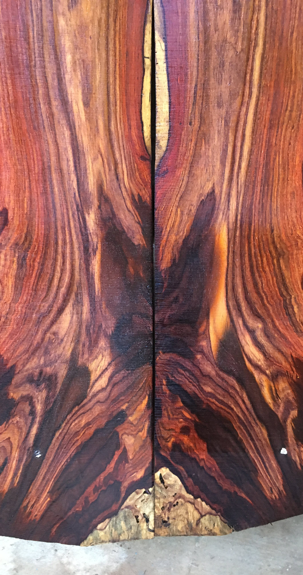 Cocobolo Body Wood